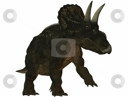 Diceratops-3D Dinosaur stock photo, 3D Render of an Diceratops-3D Dinosaur by Andreas Meyer