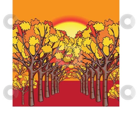 Vector Autumn trees and sunset stock vector clipart, Vector Autumn trees with path going through them and sun setting in background by Michelle Bergkamp