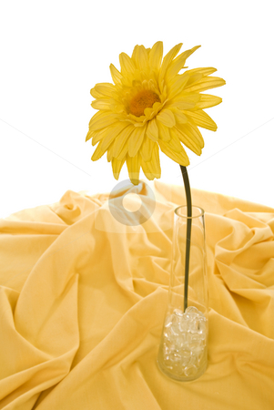 Sunflower stock photo, Cloth sunflower in glass vase with pebbles on yellow tablecloth, isolated on white. by Nicolaas Traut