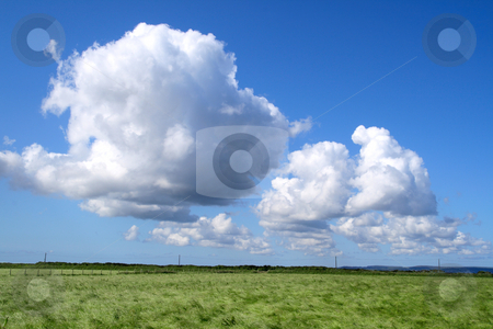 A country field with long grass and white clouds. stock photo, A country field with long grass and white clouds. by Stephen Rees