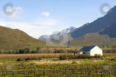 Landscape of vineyard stock photo, Beautiful Winter landscape composition of a vineyard in a valley surrounded by mountains, with a farm worker house as part of the composition. by Nicolaas Traut