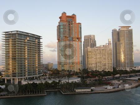 Skyscrapers in Miami stock photo, Skyscrapers in Miami, Florida (USA) by Ritu Jethani