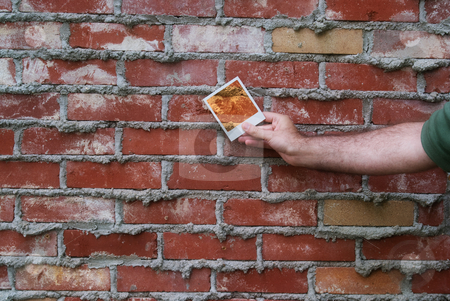 Brick Wall stock photo, Somebody holding a polaroid picture of a brick wall by Richard Nelson