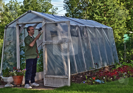 Painter stock photo, A young male painting a personal greenhouse white by Richard Nelson