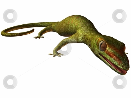 Gecko stock photo, 3D Render of an Gecko by Andreas Meyer