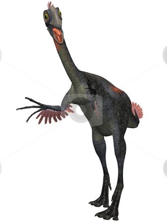 Gigantoraptor erlianensis-3D Dinosaur stock photo, 3D Render of an Gigantoraptor erlianensis-3D Dinosaur by Andreas Meyer