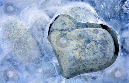 Cold Heart stock photo, Ice along the Tieton River wrapping a small stone in th heart shaped embrace of Winter by Mike Dawson