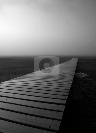 The Path stock photo, A floating dock beached by receding water along Rimrock Lake makes for a haunting path in the rising morning fog. by Mike Dawson