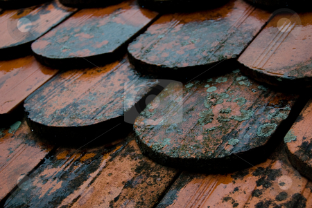 Old Tiles in the Rain stock photo, A close-up revealing the details of old roof tiles on a rainy day. by Peter Bruenner
