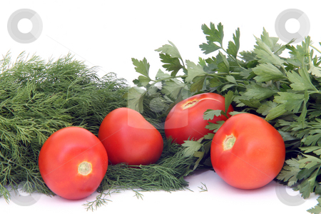 Tomatos with herbs stock photo, Four tomatos between dill  and parsley isolated on white background food and vegetables by EVANGELOS THOMAIDIS