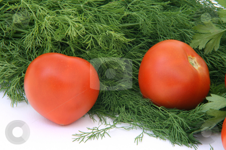 Two tomatos stock photo, Two tomatos with dill and parsley background food and vegetables by EVANGELOS THOMAIDIS