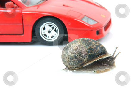 Fast snail stock photo, Racing common garden snail and sports car background isolated humor concepts by EVANGELOS THOMAIDIS