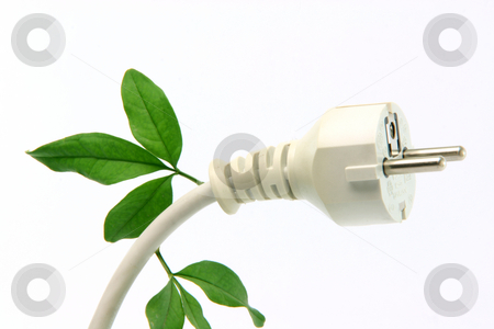 Ecological plug stock photo, Green energy ecological concepts power plug closeup isolated by EVANGELOS THOMAIDIS