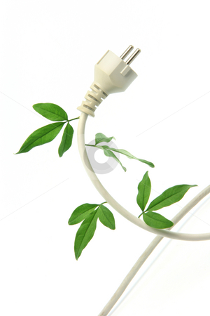 Ecology and energy stock photo, Green energy ecological concepts power plug and cable with green leaves isolated by EVANGELOS THOMAIDIS