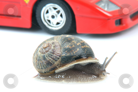 Snail and car stock photo, Comon garden snail and sports car background isolated humor concepts by EVANGELOS THOMAIDIS