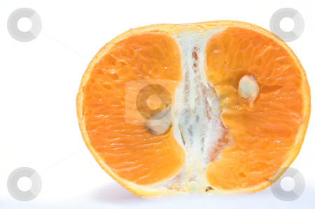 Orange Slice stock photo, A sliced orange ready to be eaten. by Robert Byron