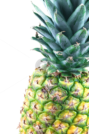 Pineapple stock photo, A delicious pineapple ready for consumption. by Robert Byron