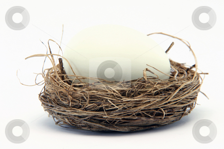 Big egg small nest stock photo, Big white egg in a small nest isolated on white background by EVANGELOS THOMAIDIS