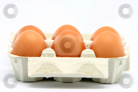 Eggbox stock photo, Six eggs in  box isolated on white background with copy space by EVANGELOS THOMAIDIS