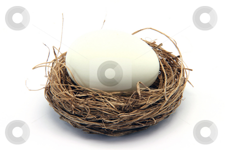White egg on nest stock photo, Big white egg in a nest isolated on white background by EVANGELOS THOMAIDIS
