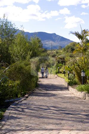 Brick walkway through a garden stock photo, A brick walkway leading through a beautiful lush garden. by Nicolaas Traut