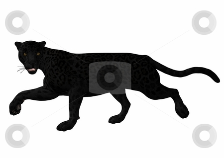 Leopard stock photo, 3D Render of an Leopard by Andreas Meyer