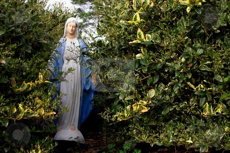Virgin Mary stock photo, Virgin Mary yard ornament. by Robert Byron