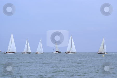 Regatta stock photo, Regatta at the horizon. by Serge VILLA