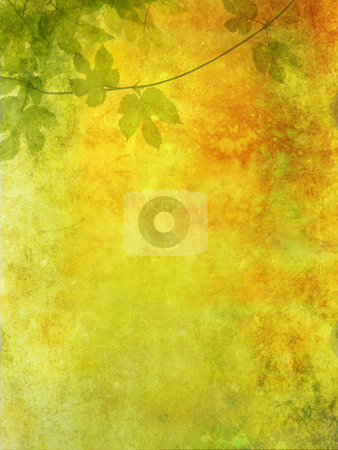 Grunge background with grape leaves stock photo, Grune, romantic background with grape leaves by Juliet Photography