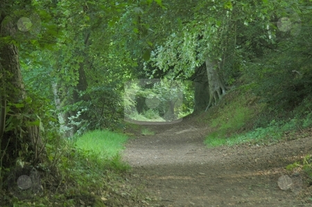 Pathway stock photo, Eccleston Ferry river walk, River Dee by Ray Roscoe