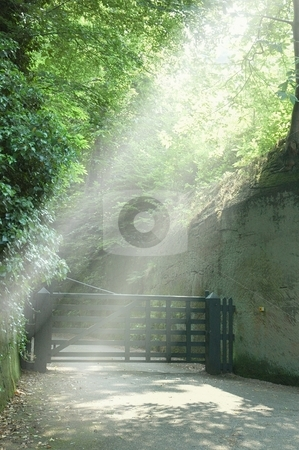 Shafts of Sunlight stock photo, Eccleston by Ray Roscoe