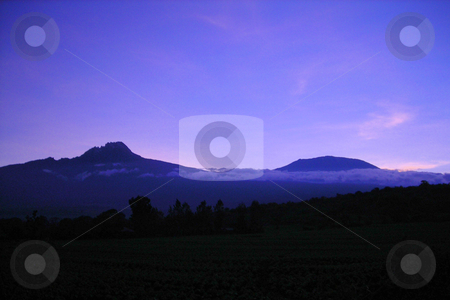 Mt. Kilimanjaro  stock photo, Beautiful Mt. Kilimanjaro and adjoining Kibos in the evening light. by Rose Nthiwa