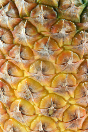 Texture ananas stock photo, Detail of ananas for background fruits vegetables and agriculture concepts by EVANGELOS THOMAIDIS