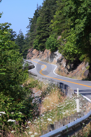 Summer Winding Road stock photo, Winding road along a hillside through the trees in the summer with blue sky. by Steve Stedman