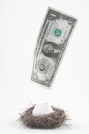Disappearing Nest Egg stock photo, A dollar bill flying away from the nest. by Robert Byron