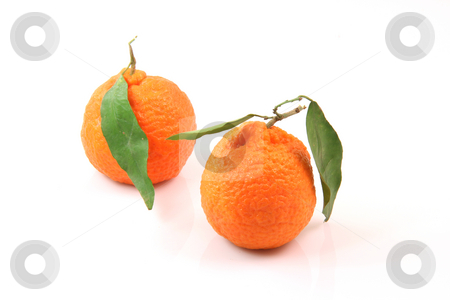 Two mandarins isolated stock photo, Two mandarins isolated on white background fruits and agriculture concepts by EVANGELOS THOMAIDIS