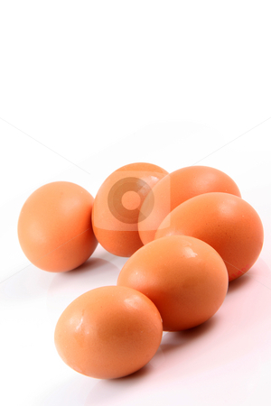 Six brown eggs  stock photo, Six brown eggs with copy space on the top isolated on white background food and agriculture concepts by EVANGELOS THOMAIDIS