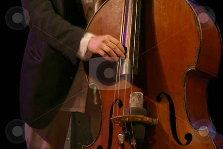 Bass player stock photo, Bass player in action music and leisure from music festival by EVANGELOS THOMAIDIS