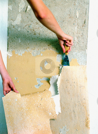 MPIXIS574012 stock photo, Woman scraping wallpaper off wall by Mpixis World
