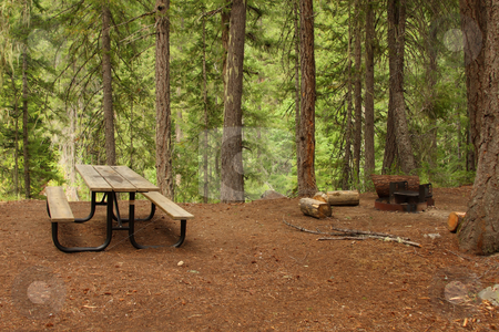 Forest Picnic Area stock photo, Forest Picnic Area with table and fire pit. by Steve Stedman