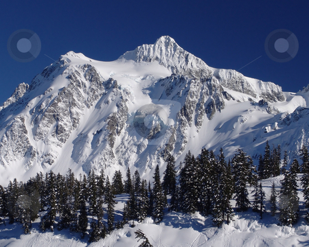 Mt Shuksan with Deep Blue Sky stock photo, Mt Shuksan in the winter from the Mt Baker Ski Area. by Steve Stedman