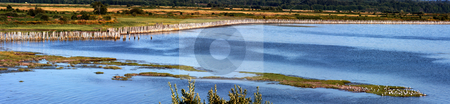 Bay View Panorama stock photo, Panoramic photo of a bay with pilings and seagulls. by Steve Stedman