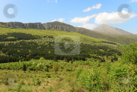 Mountain in bloom stock photo, A landscape with mountain with a forest in bloom by Ivan Paunovic