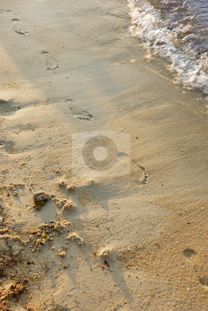 Footprints in a sand stock photo, Footprints in a sand on a beach by Ivan Paunovic