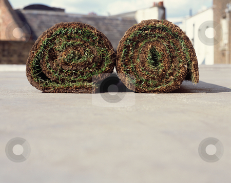 MPIXIS610054 stock photo, Two rolls of turf by Mpixis World