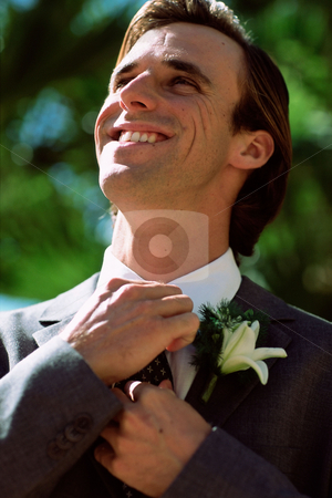 Groom on wedding day stock photo, Bridegroom adjusting necktie by Mpixis World