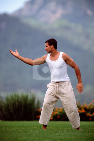 MPIXIS570031 stock photo, Martial artist by Mpixis World