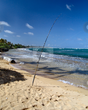 Fishing in Hawaii stock photo, Fishing pole on the beach in Hawaii with blue sky in the background. by Steve Stedman
