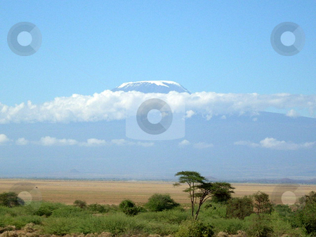 Mt. Kilimanjaro stock photo, Wiew of the beautiful, majestic Mt. Kilimanjaro from the Amboseli National Park in Kenya. by Rose Nthiwa