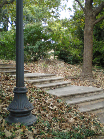 Stairway stock photo, A concrete stairway in the fall foliage by Sam Sapp